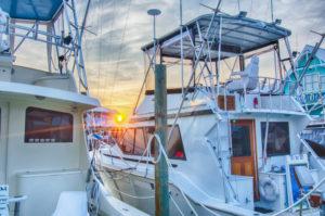 Fishing Charter Web Design