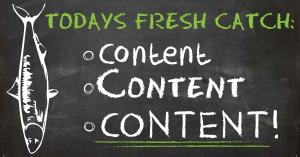 Fresh catch fresh content
